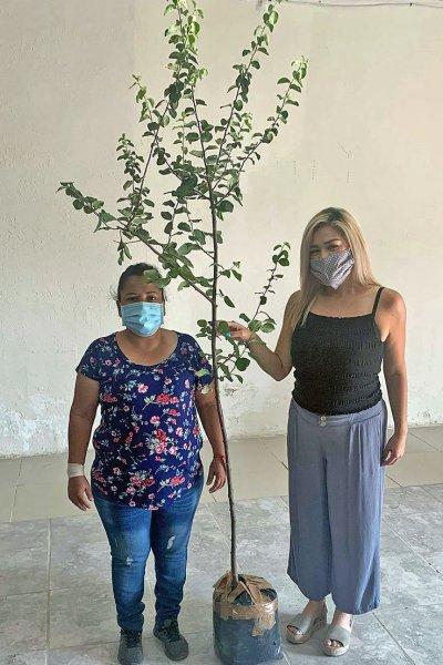 Melissa Reyes (R) presents fruit tree to Palomas resident.